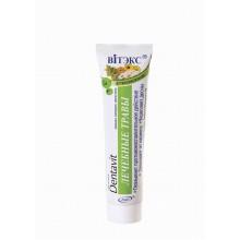 DENTAVIT Зубная паста Лечебные травы 160 гр